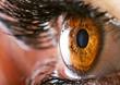 Human eye - 70095499