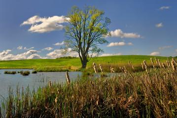 Jesień nad jeziorem, krajobraz wiejski