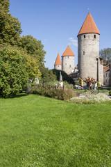 Tallinn Medieval Town