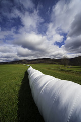 Bale tube in Upstate New York