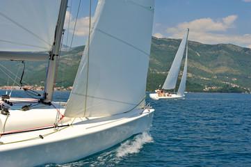 Sailboats regatta
