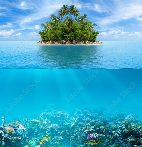 Foto op Canvas Onder water Underwater coral reef seabed and water surface with tropical isl