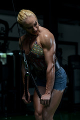 Woman Bodybuilder Doing Exercise For Triceps