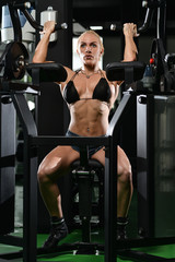 Young Female Doing Biceps Exercises In The Gym