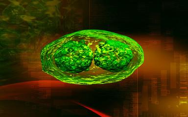 pox virus