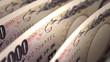 Japanese Yen Close-up