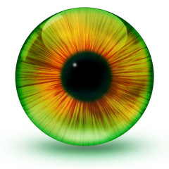 Glossy eye ball