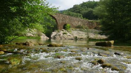 Mountain river with medie val  bridge in  Pyrenees