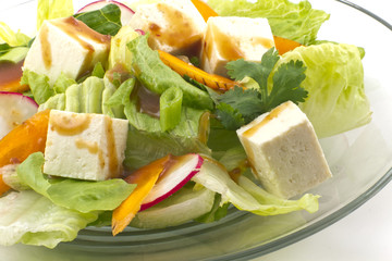 Tofu Salad with sesame dressing
