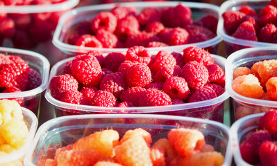 Raspberries in containers for sale.