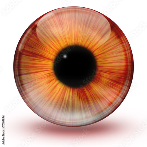 canvas print picture Glossy eye ball