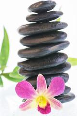 Black zen stones with colorful dendrobium orchid