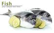 Two fish dorado with lemon isolated on white