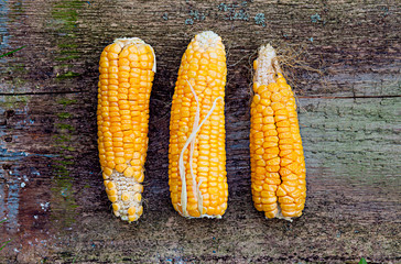 Corn cobs on vintage wood background