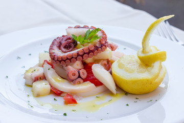 Appetizer of cuttlefish octopus and potatoes