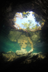 Freshwater sinkhole