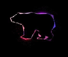 Shining bear