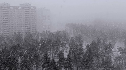 Snowfall in the city in winter.