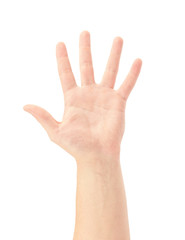 Open man hand or number five