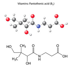Pantothenic acid molecule - vitamin b5