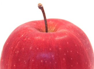 Red Apple fruit
