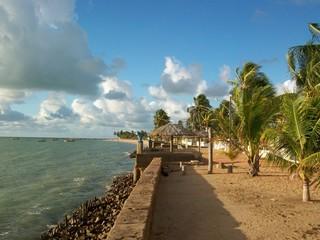 Praia São José da Coroa Grande, Pernambuco 11