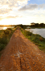 Brick road in rural area