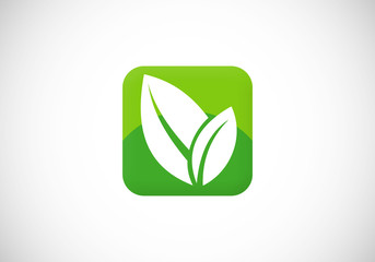 leaf icon square social media vector logo