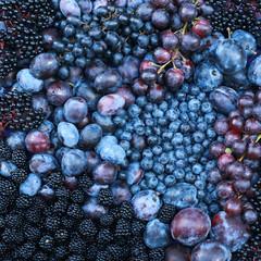 Close up of purple fruits. Blackberry Blueberry Elder Plum