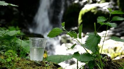 glass of drinking water near the foliage waterfall
