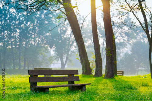 canvas print picture bench in the natural park of the city in the morning