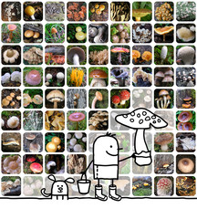 cartoon man & mushrooms collage