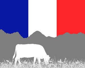 Kuh Alm und Frankreichfahne