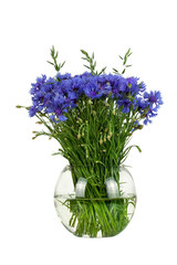 Bouquet of wildflowers - cornflowers in glass vase isolated