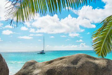 Beach with yacht and palm. Anse Georgette, Praslin, Seychelles