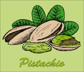 nut pistachio