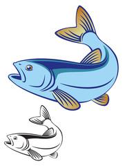 chub fish
