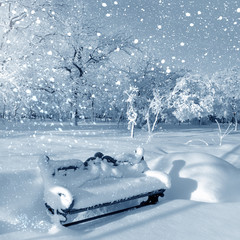 Winter park, snowstorm