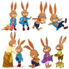 Rabbit set