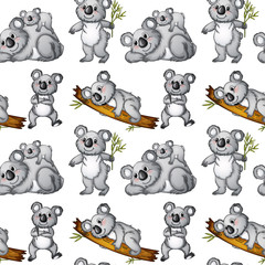 Seamless koala