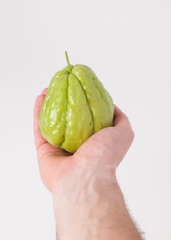 Chayote being held by a hand