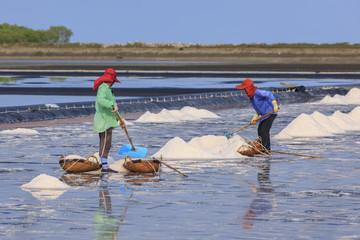 salt farmer working in the salt field, thailand