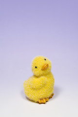 Baby Duck Toy