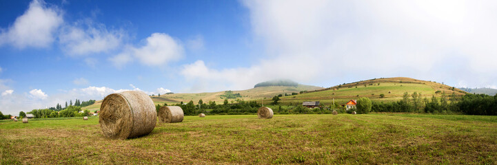 Hay-roll on field after harvest