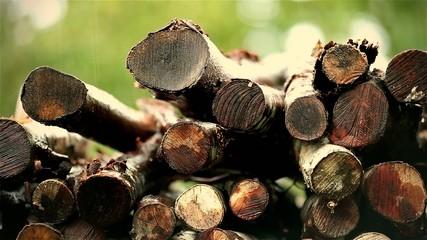 Woodpile in the rain
