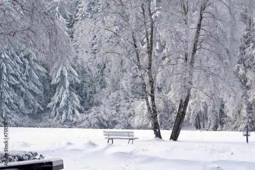 canvas print picture Winterlandschaft