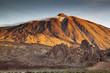 Obrazy na płótnie, fototapety, zdjęcia, fotoobrazy drukowane : Tenerife XVI