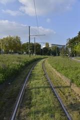 Rails de tram dans la vallée de la Woluwe