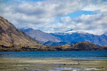 New Zealand 23