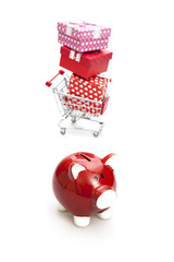 Budget for Gift